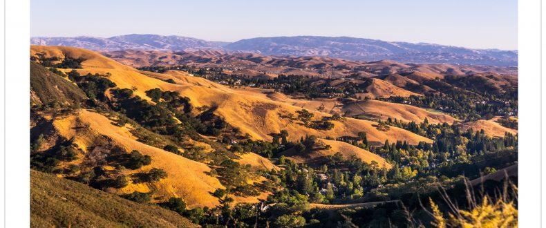 Diablo Valley Home Prices Market Trends July 2021